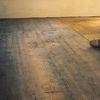 Home-Dzine.co.za   home improvement and maintenance   restoring a hardwood floor with woodoc