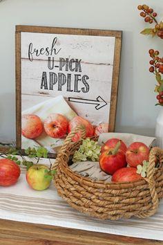 Apple picking fall p