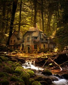 Jasmine Junger artwork... the woodsman's lodge~?
