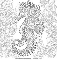Zentangle stylized cartoon seahorse and tropical fish among seaweed. Hand drawn sketch for adult antistress coloring page, T-shirt emblem, logo or tattoo with doodle, zentangle, floral design elements - stock vector