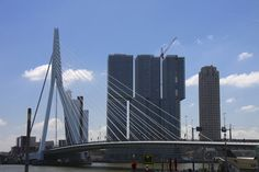Erasmusbrug #Rotterdam Rotterdam, Holland, San Francisco Skyline, Landscape, Travel, Pictures, Viajes, The Nederlands, Scenery