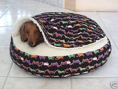 Doxie in Snuggle Bed for Burrowing Dogs