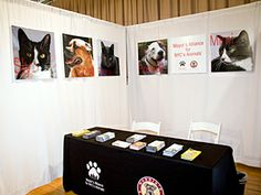 The Mayor's Alliance booth gave event-goers a place to learn more about efforts to save lives of NYC's homeless animals. (Photo by Steven Fr...