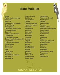 Safe fruit list for birds