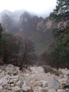 Devil's Hall Trail, Guadalupe Mountains National Park