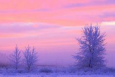 Frosty sunrise in Okotoks Alberta.