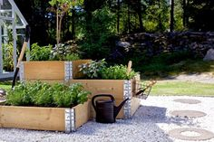 Pallet Collars, Small Backyard Landscaping, Plant Wall, Garden Inspiration, Vegetable Garden, Planting Flowers, Pergola, Home And Garden, Landscape