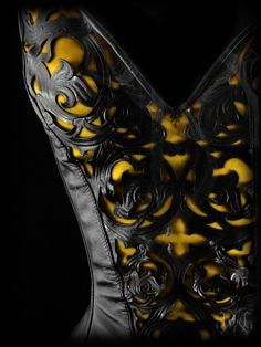 Bustier...only a feline Woman could pull this off