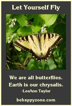 We are all butterflies. Earth is our chrysalis. Positive, inspirational picture quotes.