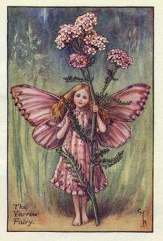 Yarrow Flower Fairy Print c.1927 Fairies by Cicely Mary Barker