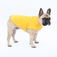 Imperméable pour chien en microfibre