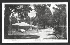 Monbulk-rppc-Nancye-Belle-Cafe-Victoria-Australia-50s
