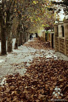 Autumn in #Sawfar الخريف في #صوفر By Sarar Hilal #WeAreLebanon #Lebanon