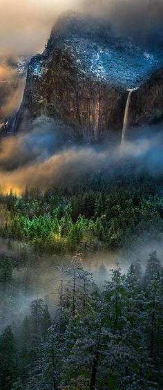 Yosemite National Park, California, USA - title Serpentine Vapors at Yosemite - by William Toti