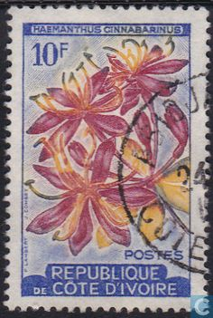 Flower Stamp, Vintage Stamps, Grow Your Own Food, Ivory Coast, World Traveler, Countries, Cocoa, Flowers, Poster
