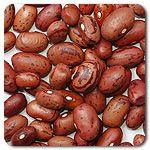 Organic Vermont Cranberry Bean