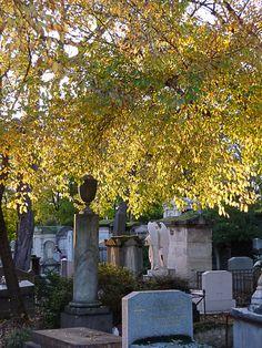 Belles lumières d'automne au crépuscule dans le cimetière du Père Lachaise (Paris 20e)  http://www.pariscotejardin.fr/2012/11/belles-lumieres-d-automne-au-crepuscule-dans-le-cimetiere-du-pere-lachaise-paris-20e/