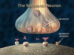 Increase serotonin levels Low Serotonin Symptoms