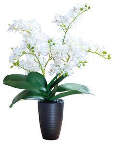 "21"" White Mini Phalaenopsis Artificial Orchid Arrangement - Impact modern artificial flowers"