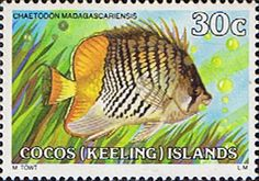 Cocos Keeling Islands 1979 Fishes SG 41 Madagascar Butterflyfish Fine Mint Scott 42  Other Cocos Keeling Island Stamps HERE