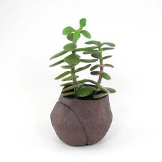 Textured Brown Pinch Pot, Small Bag Planter for Bonsai, Patterned Kusamono or Succulent Planter, 02-15-05