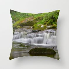 Waterfall in the Black Forest Throw Pillow