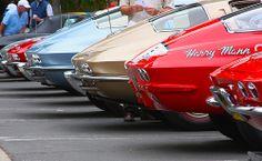 Corvette tails 2