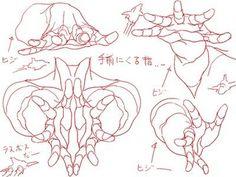 Hands (drawing tutorial hands anatomy)
