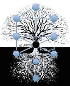 Tree of Life - Superimposed
