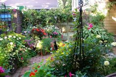 BARAKURA English Garden. 蓼科高原バラクライングリッシュガーデン
