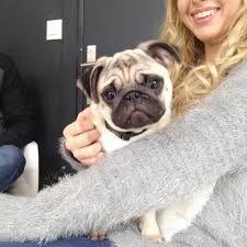 La magnifique Marie alias EnjoyPhoenix avec son chien Jelly