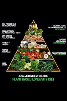 """Plant Based Food Pyramid - not a """"diet"""" in the way it's commonly used, certainly a lifestyle #vegan for ethical reasons #vegeterian #primehealth"""