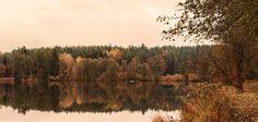 Fall Colours - Kammerweiher - Bei diesem Bild haben wir die Farben des Naturschutzgebietes Kammerweiher im  Herbst eingefangen.