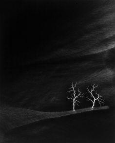 Lightning Fields 144, 2009 - Hiroshi Sugimoto