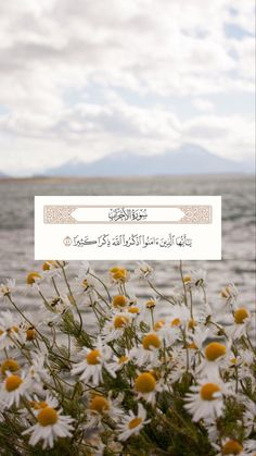 Beautiful Quran Quotes, Quran Quotes Love, Quran Quotes Inspirational, Islamic Love Quotes, Muslim Quotes, Prayer Quotes, Cute Flower Wallpapers, Peaceful Words, Quran Surah