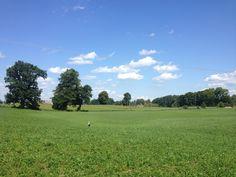 Meadows near Wojnowo