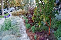 Rock mulch color transitions