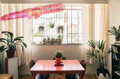 Decoração: Plantinhas no apartamento    por Lia Camargo | Just Lia       - http://modatrade.com.br/decora-o-plantinhas-no-apartamento