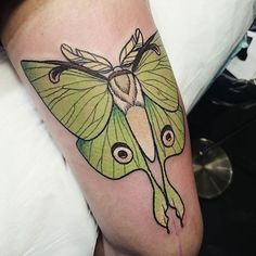 sometimes i do tattoos. thanks raven @bloodlinesinknorthperth 9228 1313 tahlulabear@outlook.com luna moth