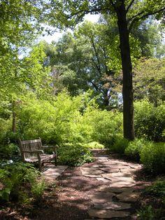 Love woodland gardens!