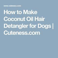 How to Make Coconut Oil Hair Detangler for Dogs | Cuteness.com
