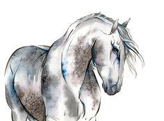 Horse Art: Mooi, Archival Giclee Watercolor & Ink Painting Reproduction. $25.00, via Etsy.