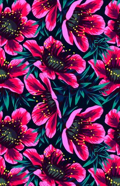 Manuka Floral Repeat Print on Behance