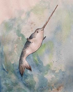Narwhal Print A Happy Narwhal 8x10 inch by GeorgiaDunnStudio