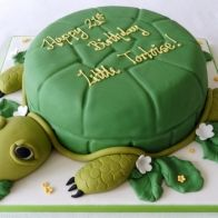 Tortoise Cake :)