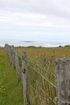 My dad had this type of fence dividing the pastures and crops, etc.  How many times I climbed a fence to get to the other side !