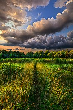 """Another Way"" Wisconsin Horizons by Phil Koch. Lives in Milwaukee, Wisconsin, USA. http://phil-koch.artistwebsites.com https://www.facebook.com/MyHorizons"