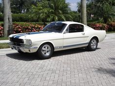 1965 Ford Mustang Shelby GT350 - My dad has one just like it only it's a '66