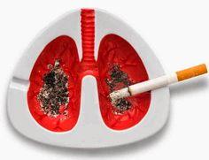 PURIFICACION DE AIRE AIRLIFE te dice. El cáncer pulmonar es el tipo de cáncer más mortífero tanto para hombres como para mujeres. Cada año mueren más personas de cáncer en el pulmón que de cáncer de mama, de colon y de próstata combinados. El cáncer pulmonar es más común en adultos mayores y es poco común en personas menores de 45 años. .