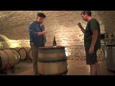 Wijnbuisvrienden 3 Hein Vergeer - YouTube